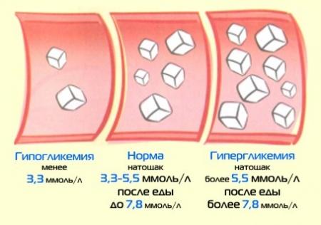 Норма инсулина в крови