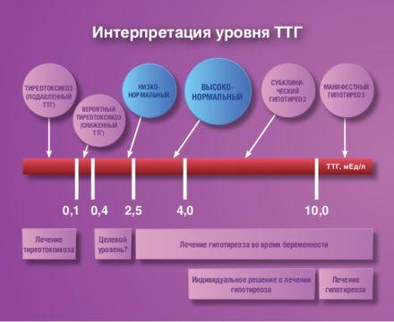 Интерпретация уровня ТТГ