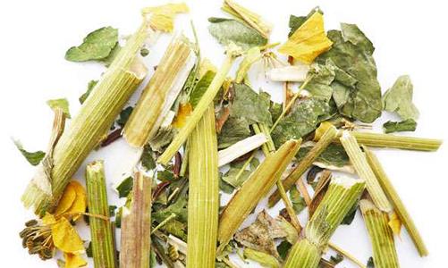 Травы от панкреатита и холецистита