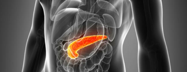 Можно ли есть гранат при панкреатите?