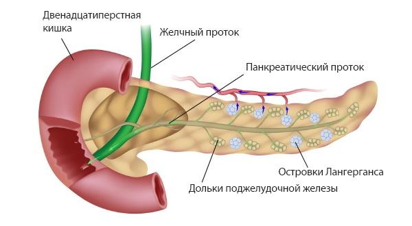Боль при панкреатите отдает в спину