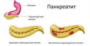 Овес при панкреатите