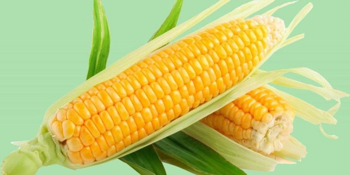 При панкреатите можно кушать кукурузу в thumbnail