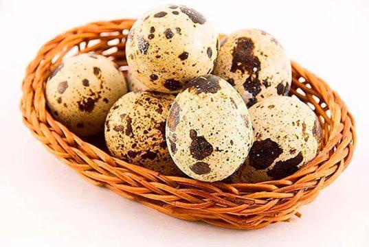 Перепелиные яйца можно при панкреатит